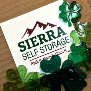Sierra Self Storage Logo St Pats 300